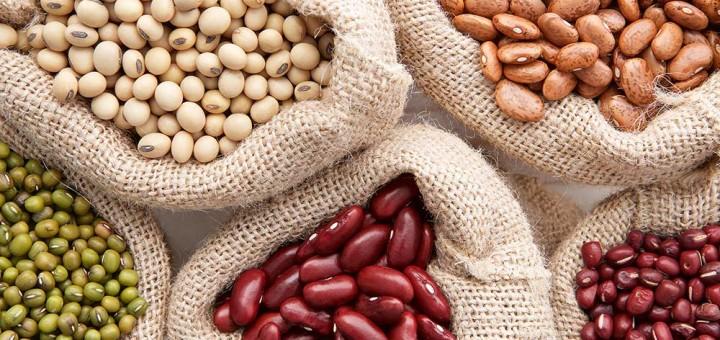 Bohnen als vegane Eiweißquelle